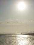 Seal Beach Pier View